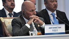 Президент Афганистана Ашраф Гани на заседании совета глав государств - членов Шанхайской организации сотрудничества. 9 июня 2017