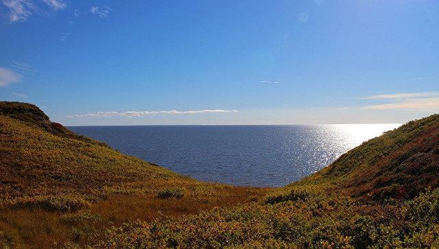 Побережье Карского моря. Архивное фото