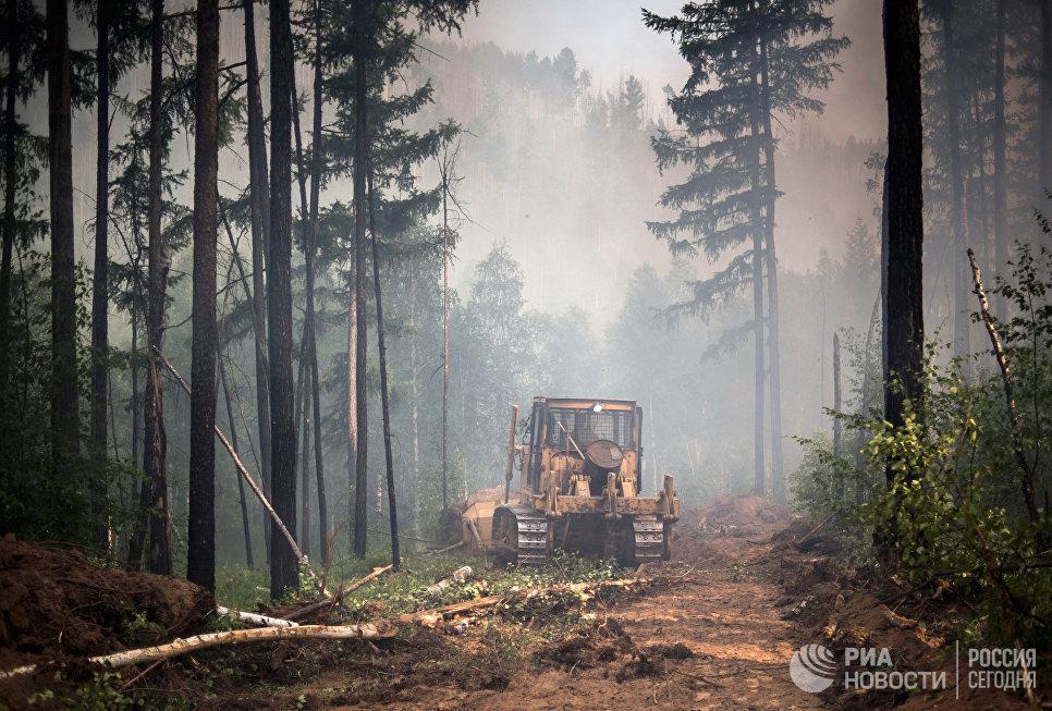 Создание заградительной полосы с помощью бульдозера во время ликвидации лесного пожара в Бурятии