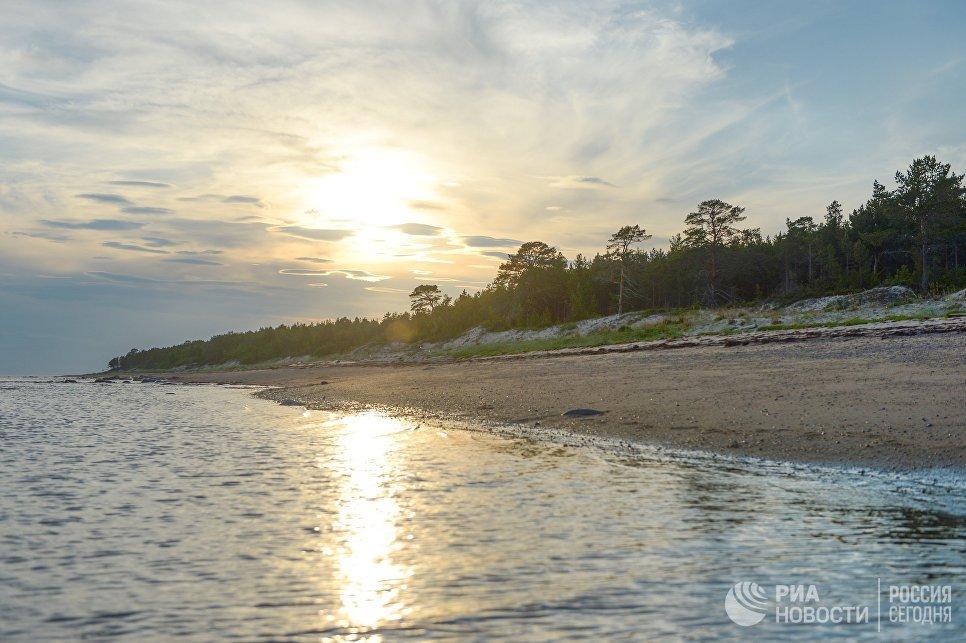 Берег Онежского залива в районе мыса Глубокий