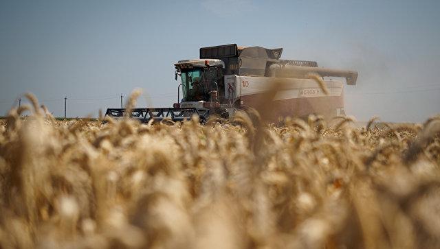 Уборка пшеницы на полях АО Агрокомплекс в Краснодарском крае. Архивное фото