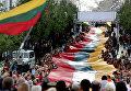 Флаги Литвы в Вильнюсе