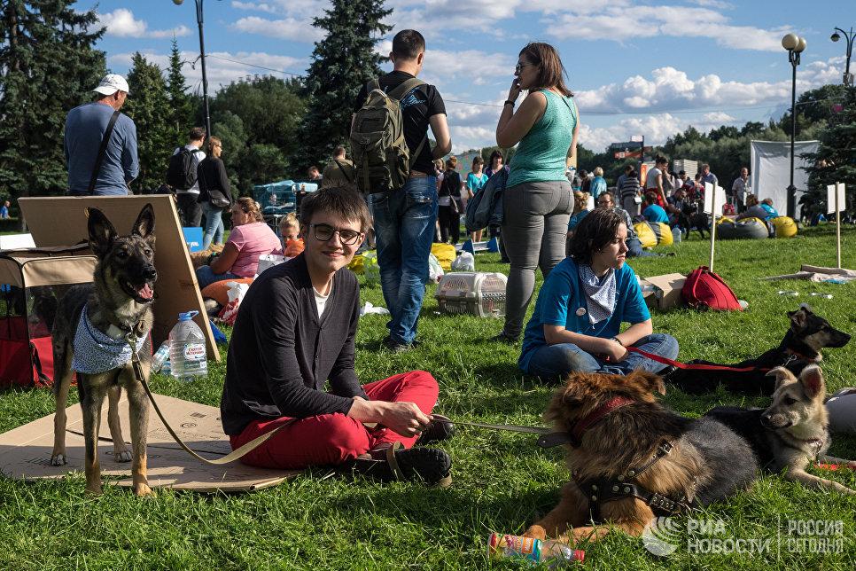Участники фестиваля собак и людей Спутники жизни в Измайловском Парке культуры и отдыха в Москве