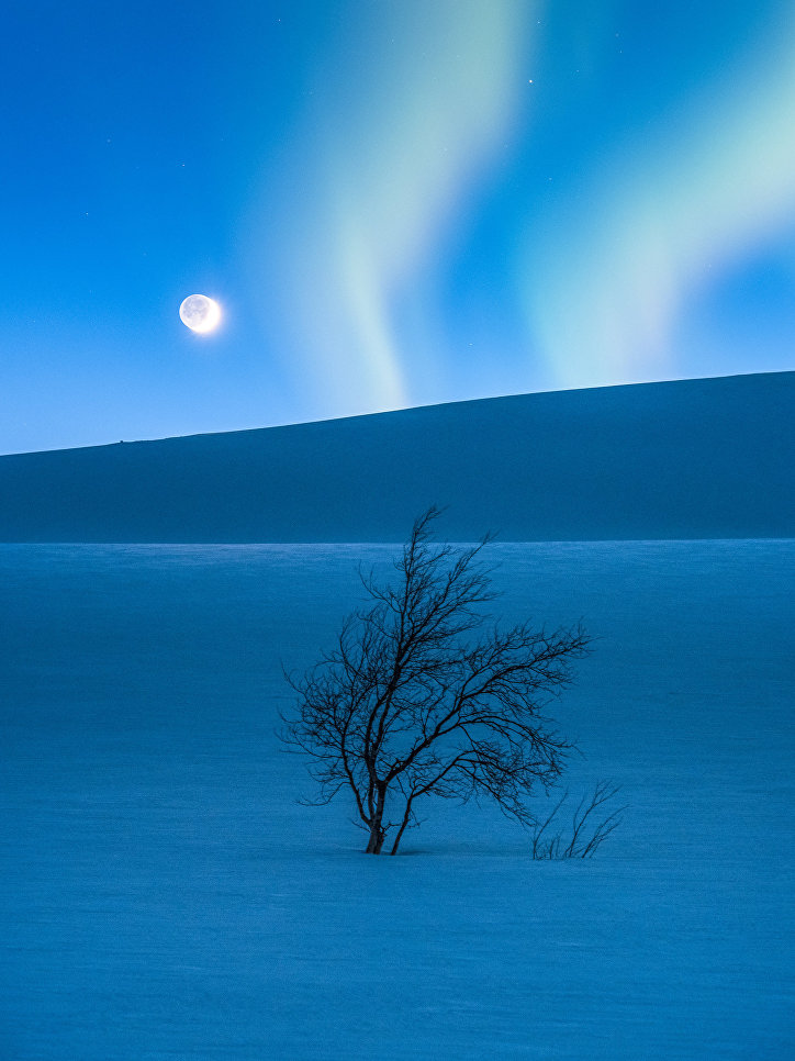 Работа фотографа Tommy Eliassen The Blue Hour, вошедшая в шорт-лист Insight Astronomy Photographer of the Year 2017