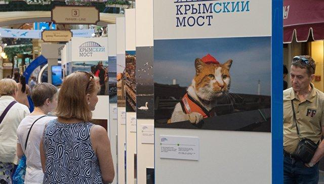 Выставка, посвященная мосту через Керченский пролив, в ГУМе