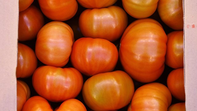 Турция надеется, что Россия снимет запрет на импорт помидоров