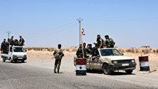 Солдаты сирийской армии в окрестностях Ракки. Архивное фото