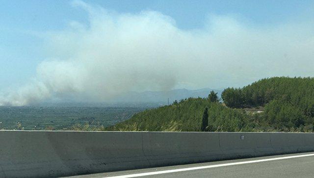 Греция попросила у ЕС помощи в борьбе с лесными пожарами