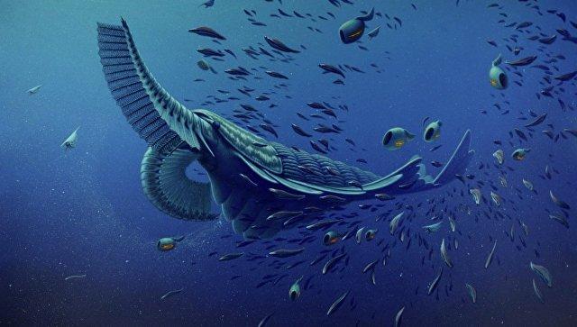 Фауна кембрийского периода