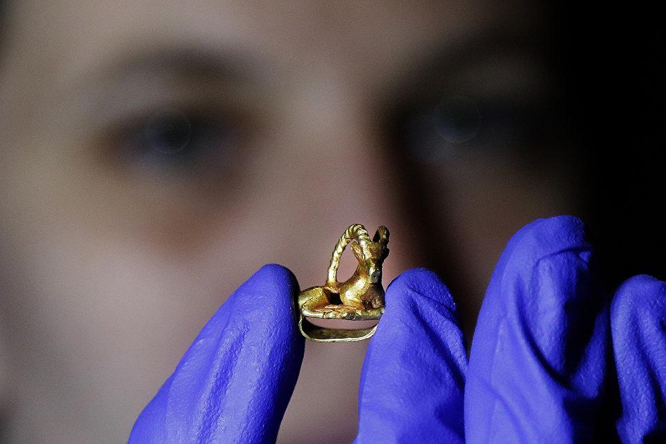 Золотая аппликация на одежду в Британском музее в Лондоне во время подготовки к выставке Скифы: воители древней Сибири