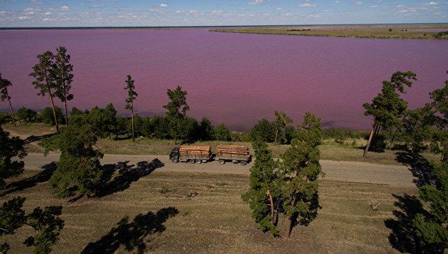 Горько-соленое Малиновое озеро в Михайловском районе Алтайского края. Архивное фото