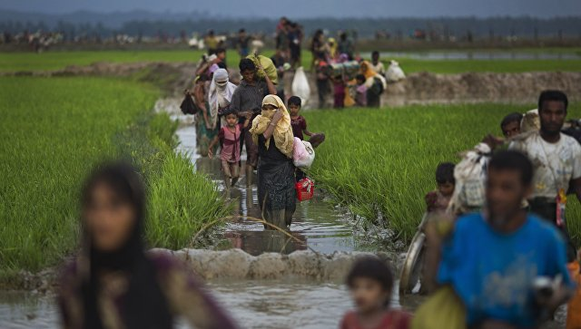 Люди из народности рохинджа проходят рисовые поля после перехода бангладешской границы
