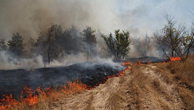 Пострадавшим отпожаров вВолгоградской области направили 13 млн руб.