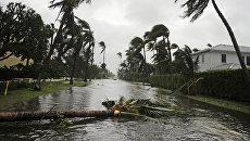 Последствия урагана Ирма во Флориде. Архивное фото
