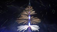 Фейерверк на Московском международном фестивале  «Круг света» у Останкинского пруда. Архивное фото