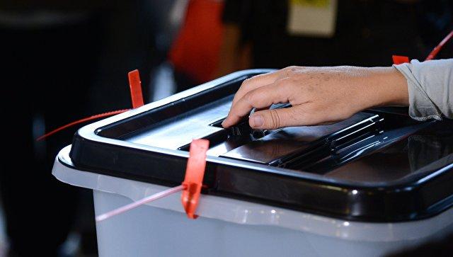 В Грузии началось голосование на выборах в местные органы управления