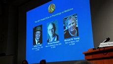 Объявление лауреатов Нобелевской премии по физиологии или медицине за 2017 год в Стокгольме, Швеция. 2 октября 2017