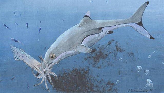 """Ученые выяснили, как выглядели """"морские чудища"""" времен динозавров"""