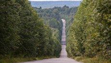 Дорога в лесу, Карелия. Архивное фото