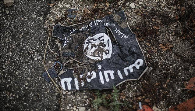 Флаг радикальной исламистской организации Исламское государство Ирака и Леванта на месте боев в провинции Латакия. Архивное фото