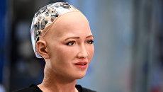 Человекоподобный робот София. Архивное фото