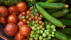 Сельскохозяйственная продукция. Архивное фото