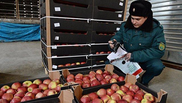 ФТС усиливает контроль за санкционными товарами