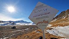 На Алтае завершилась добровольческая экспедиция По следам снежного барса