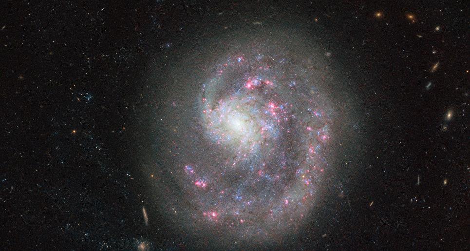 Галактика NGC 4625 в созвездии Гончих Псов