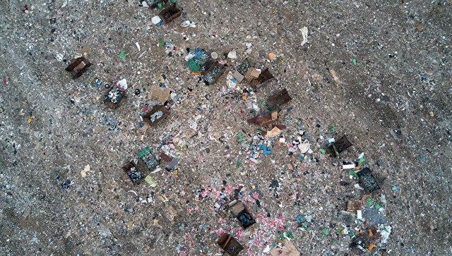Свалка с мусором. Архивное фото