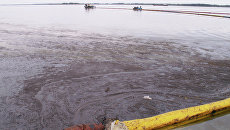Очистка реки от нефтепродуктов. Архивное фото