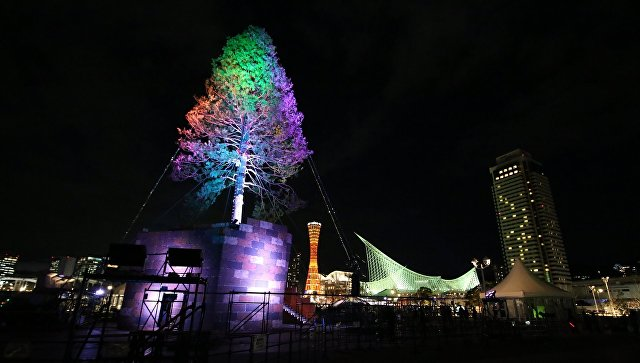 Церемония зажжения рождественского дерева