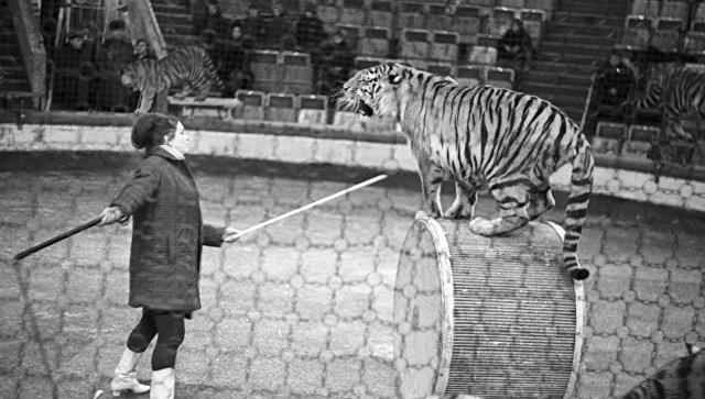 Глеб Никитин отметил заслуги Валерия Шанцева вреконструкции Нижегородского цирка