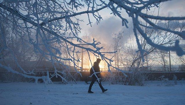МЧС предупредило москвичей о грядущих морозах