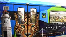 Дальневосточный леопард появился на новом тематическом поезде метро