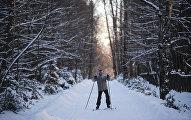 Морозы в Москве