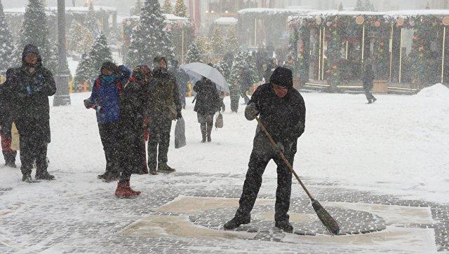 В столице России из-за снегопада больше 100 деревьев рухнули наавтомобили, припаркованные неподалеку