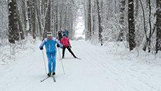 Пора вставать на лыжи! Зимний спорт в парках города