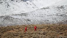 Поисковая операция в районе крушения иранского пассажирского самолета. 19 февраля 2018