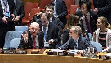 Постпред РФ при ООН Василий Небензя во время заседания Совета Безопасности ООН по вопросу о прекращении огня в Сирии. 24 февраля 2018