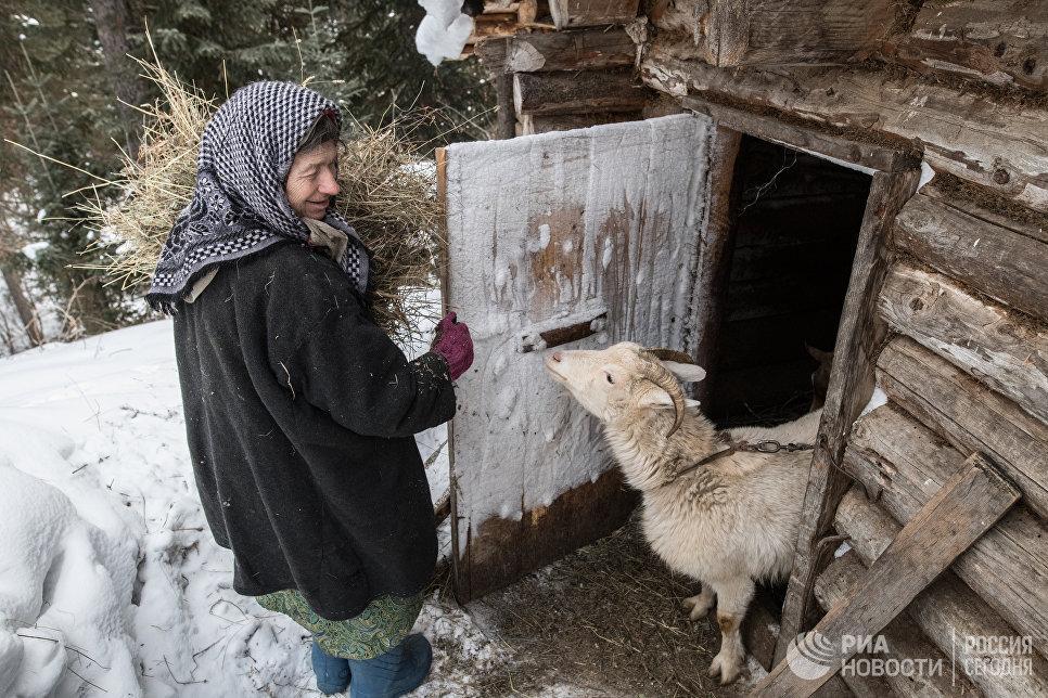 Агафья Карповна содержит коз более 30 лет.