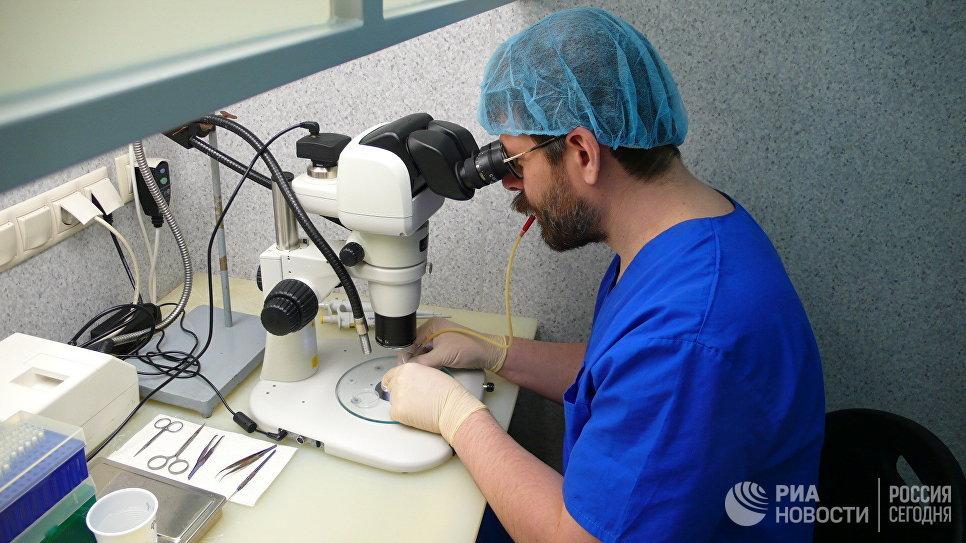 Петр Сергиев забирает яйцеклетки в капилляр