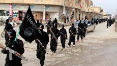 Бойцы ИГИЛ*. Архивное фото