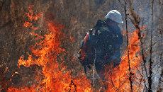 Сотрудники Лесной охраны. Архивное фото