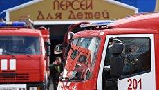 Автомобили противопожарной службы МЧС РФ у детского торгового центра Персей в Москве, где произошло возгорание. Архивное фото