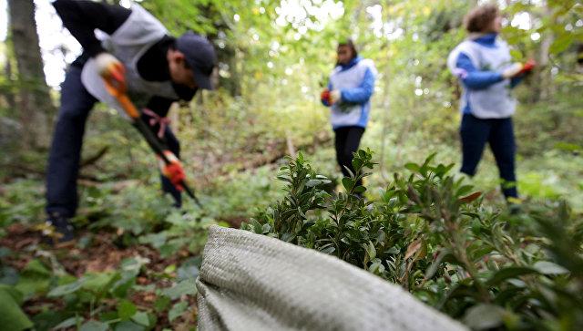 Воля и великодушие: в ЮФО выберут лучших волонтеров