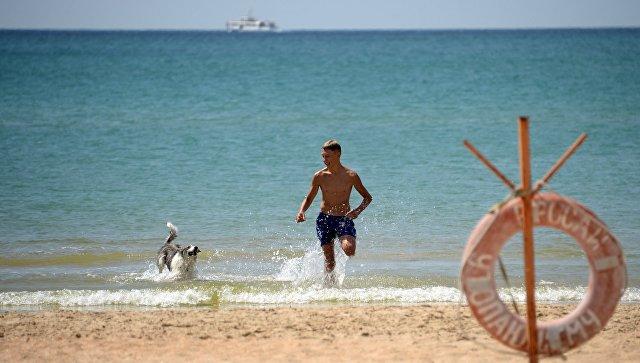 Мужчина с собакой на берегу Черного моря в Анапе. Архивное фото