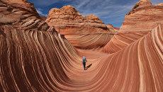 Каменная волна Аризоны