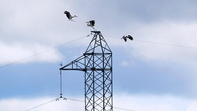 Правительство одобрило проект о микрогенерации в электроэнергетике