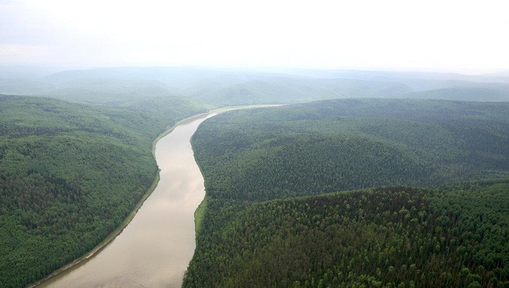 Вид на реку Большой Пит в тайге в Енисейском районе Красноярского края. Архивное фото